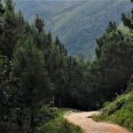 Sedero de la Bici en Barahona