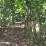 Sendero de La Virgen entre Platón y Cachote, Barahona