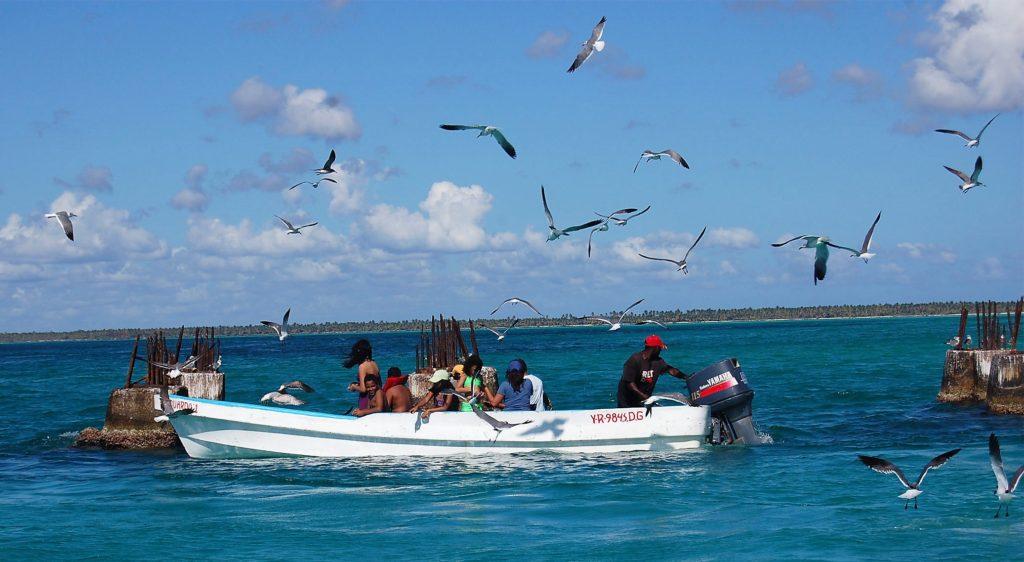 En el trayecto te acompañarán gaviotas y otras aves para darte la bienvenida a su paraíso