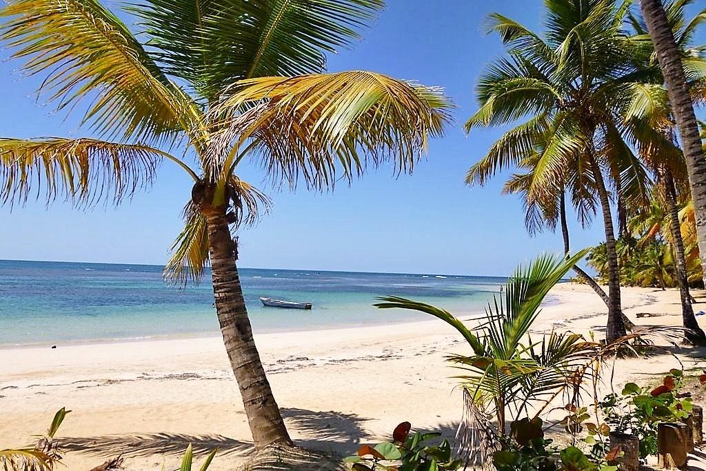 Playa Las Ballenas Samaná