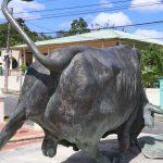Tiempo de cuarentenea, turismo virtual en El Seibo