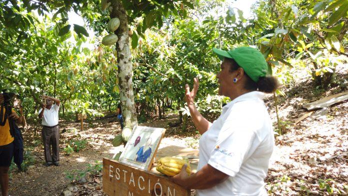 Hacienda Cufa en Guananico
