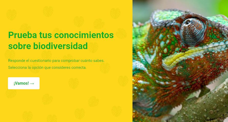 ¿Qué sabes sobre biodiversidad? Ponte a prueba en el Día Mundial del Ambiente