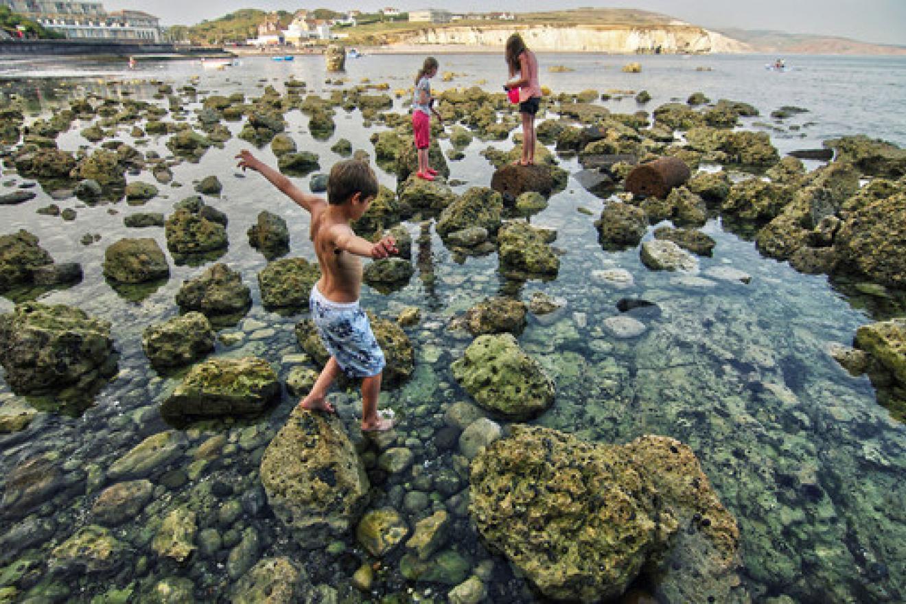 Reserva de la Isla de Wight, en el Reino Unido. Foto Portal de la ONU.